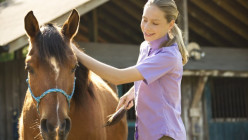 The Basics of Proper Horse Care