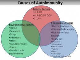 Causes of Autoimmunity in Hashimoto's Thyroiditis