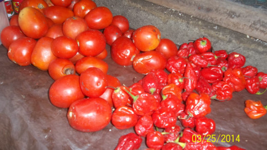 Fresh Ripe Tomatoes With Pepper