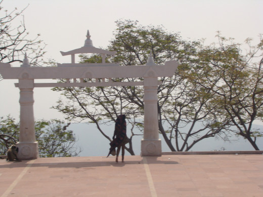 Overlooking The Shanti Stupa Area