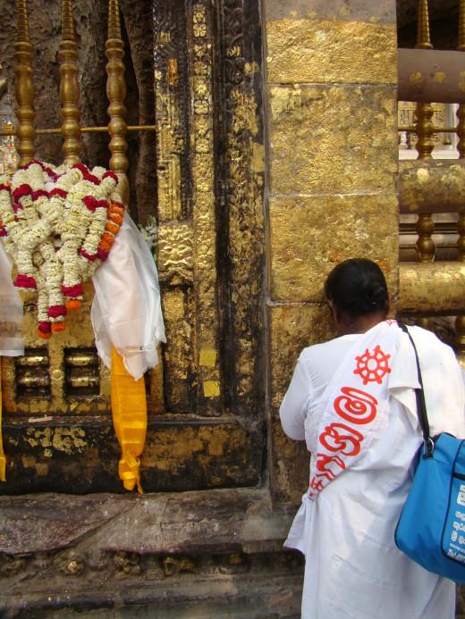 Pilgrim Prays At Vajrasana Enclosure, Bodh Gaya
