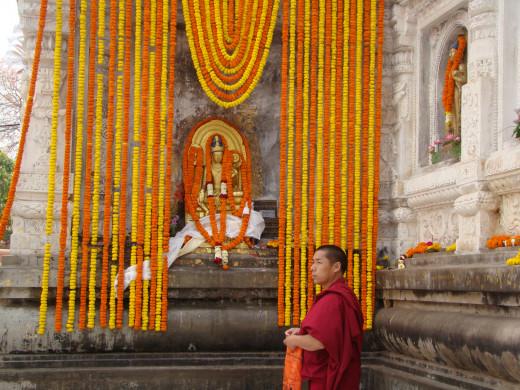 Monk At Bodh Gaya Temple