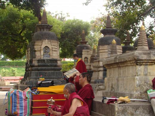 Monks Meditate Among Stupas, Bodh Gaya