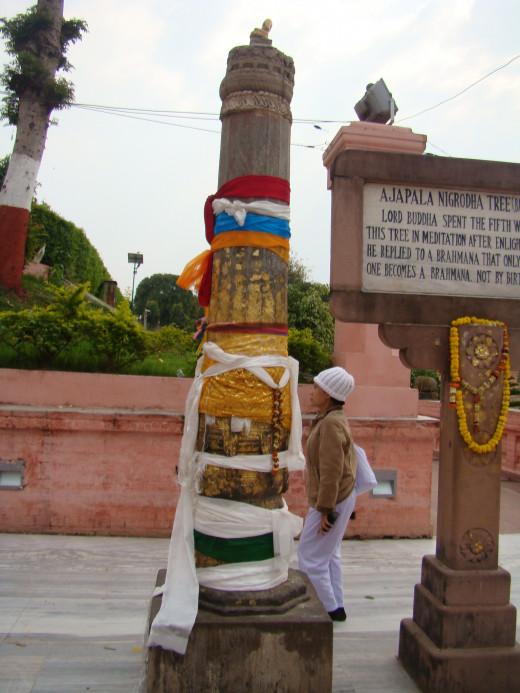 Site Of The Ajapala Tree, Mahabodhi Temple, Bodh Gaya