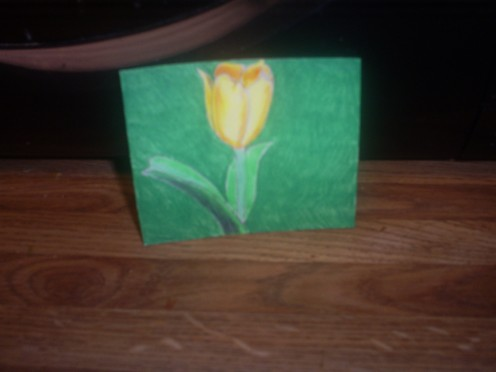 Here I have colored the daffodil. The daffodil in my picture was yellow, so I used an orange colore pencil to create shading and dimension.