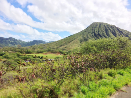 Beautiful Koko Head Crater