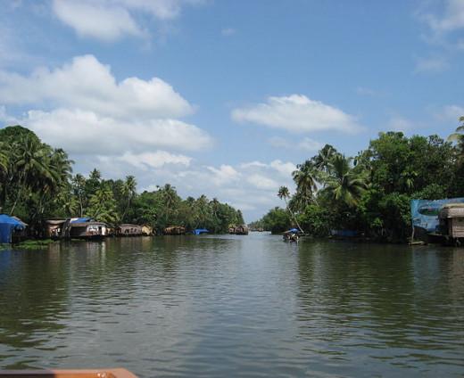 Backwater Spread at Kerala