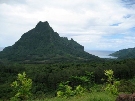 We began our journey in two jeeps. First we headed for Moorea's volcanic peaks. The road encircled the island's coastal road by passing through lush majestic mountain slopes