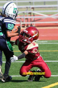 The Dangers of Pop Warner Football: How To Detect A Concussion