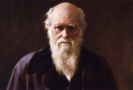 Charles Darwin (19th Century) an English naturalist who propounded his theory of evolution according to which species of animals are products of a process of natural selection.