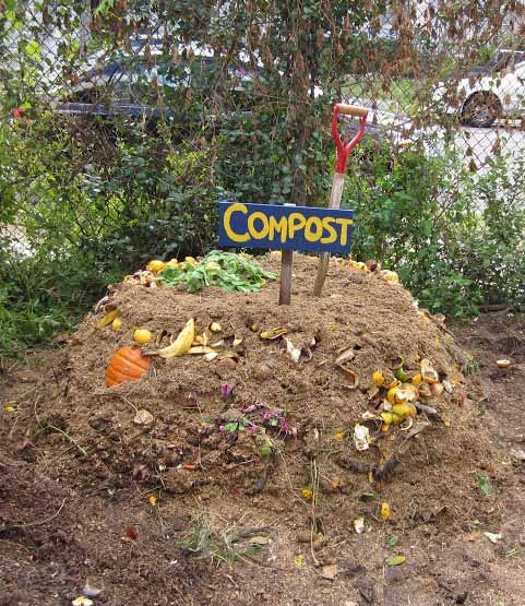 For fastest results, just start a compost pile!