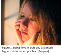 Emetophobia: Symptoms and Treatments that Require Continuous and Dedicated Effort by Patients