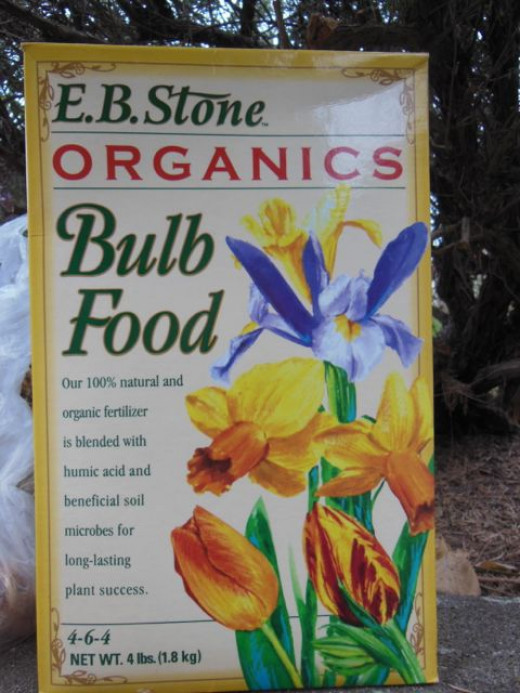 After you clean the soil, you will want to add some nutrients.  I mixed in some compost, and some general bulb food.