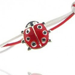 Lovely Ladybug Gifts for Pre-teens