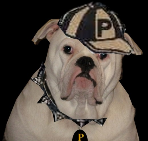 Bruno as the PHS mascot