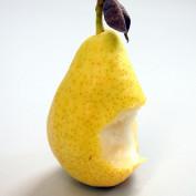 piedromolinero profile image