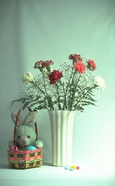 Simple Carnations and Babies Breath, a simple artistic display.