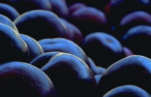 Try Fresh Blueberries