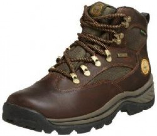 Men's Chocorua Gore-Tex Hiker