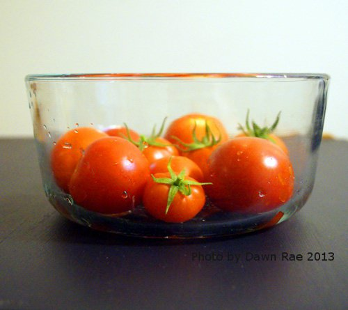 Last season's container tomatoes! I'm anxious for more tomatoes.