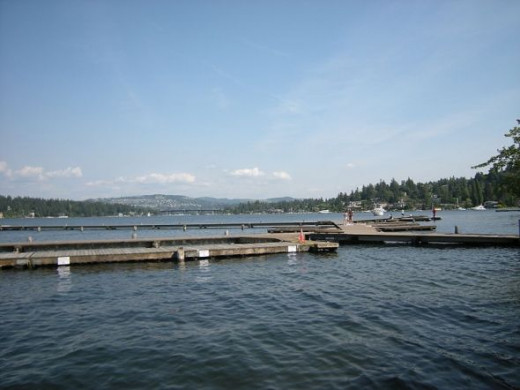 Floating Dock at Luther Burbank Park