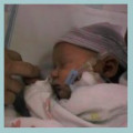 Infant Survival Rates during Pregnancy