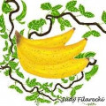 Yonanas Fruit Only Soft Ice Cream Maker