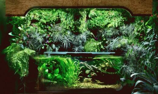 Make your own indoor garden for Make your own indoor garden