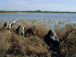 duck-hunters