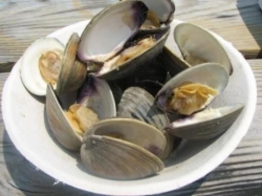 steamed cherrystone clams