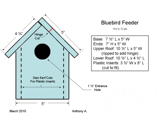 Bluebird Feeder Plans - Side View