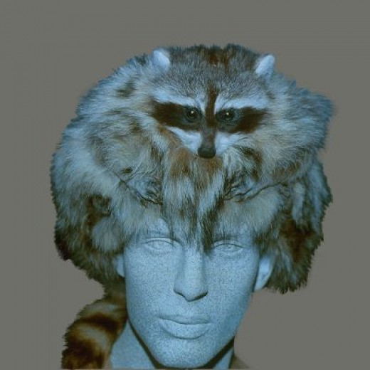 Coonskin Hat: Remembering The Coonskin Cap