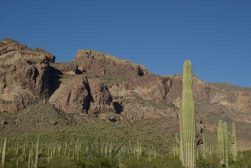 Mountains with Saguaros.