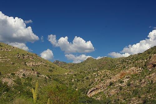 Elevation just past the Manzanita zone.