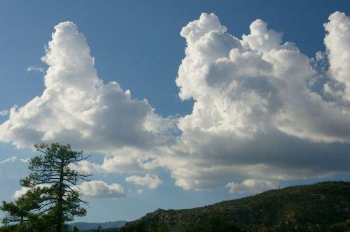 More beautiful cumulus clouds.