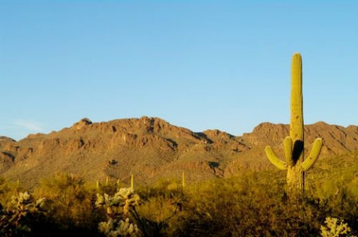 On the other side of the mountain range, close to the Arizona-Sonora Desert Museum.