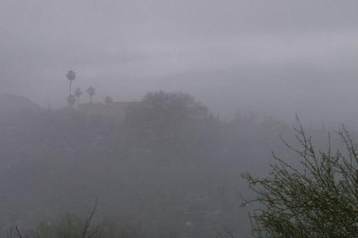 Neighbor's house with palms, shrouded in fog.