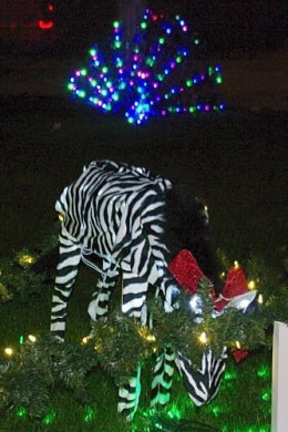 """These decorations were called """"Winterhaven Zoo"""". Most of the animals were lit, but this one moved its head up and down. This won """"Best Special Effects""""."""