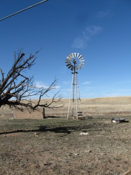 A windmill pumping water for a ranch in the San Raphael Valley are of the Coronado National Forest in southern Arizona.