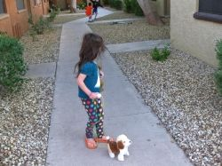 The girl is walking the dog.