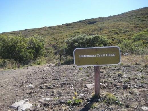 Halemanu Trail head