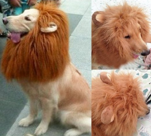Generic Pet Costume Lion Wig with Ears