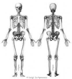 Spooky Skeleton Crafts