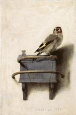 For Your Reading Pleasure: The Goldfinch