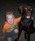 My Chocolate Labradors Bad Eating, and other Dog, Habits