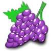 Grape Jewelry - Earrings, Pendants and Rings with a Grape Theme