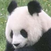 Lookatit profile image