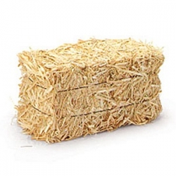 Bale of Hay- will fill many shelters
