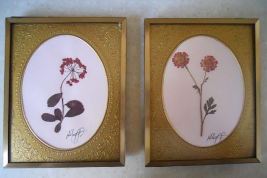 Pressed-Flowers-Framed