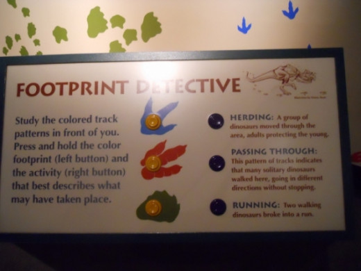 More footprint detective information